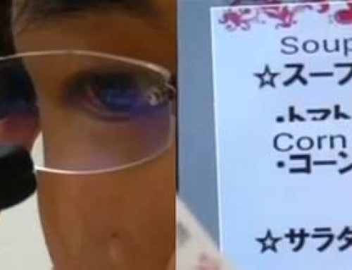 Translation Glasses Unveiled at Japan's Gadget Show
